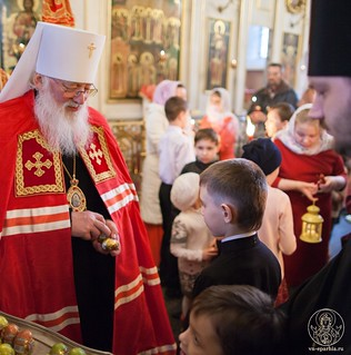 Покровский собор 440