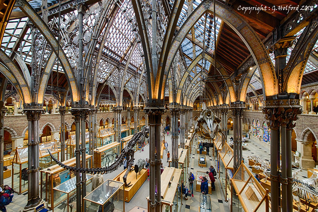 Natural History Museum in Oxford