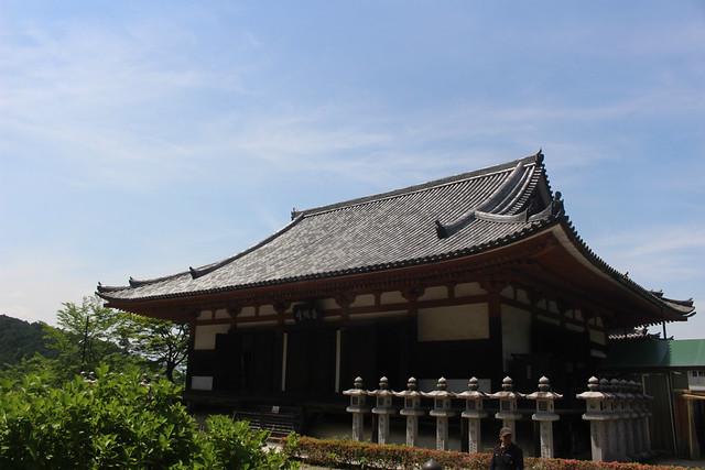 tsubosakadera052