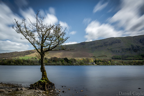 lonelytree tree clouds ullswater lake lakedistrict cumbria nationaltrust natural nature longexposure danielcoyle nikon nikond7100 d7100 uk england countryside water view mountains fells sky reflections