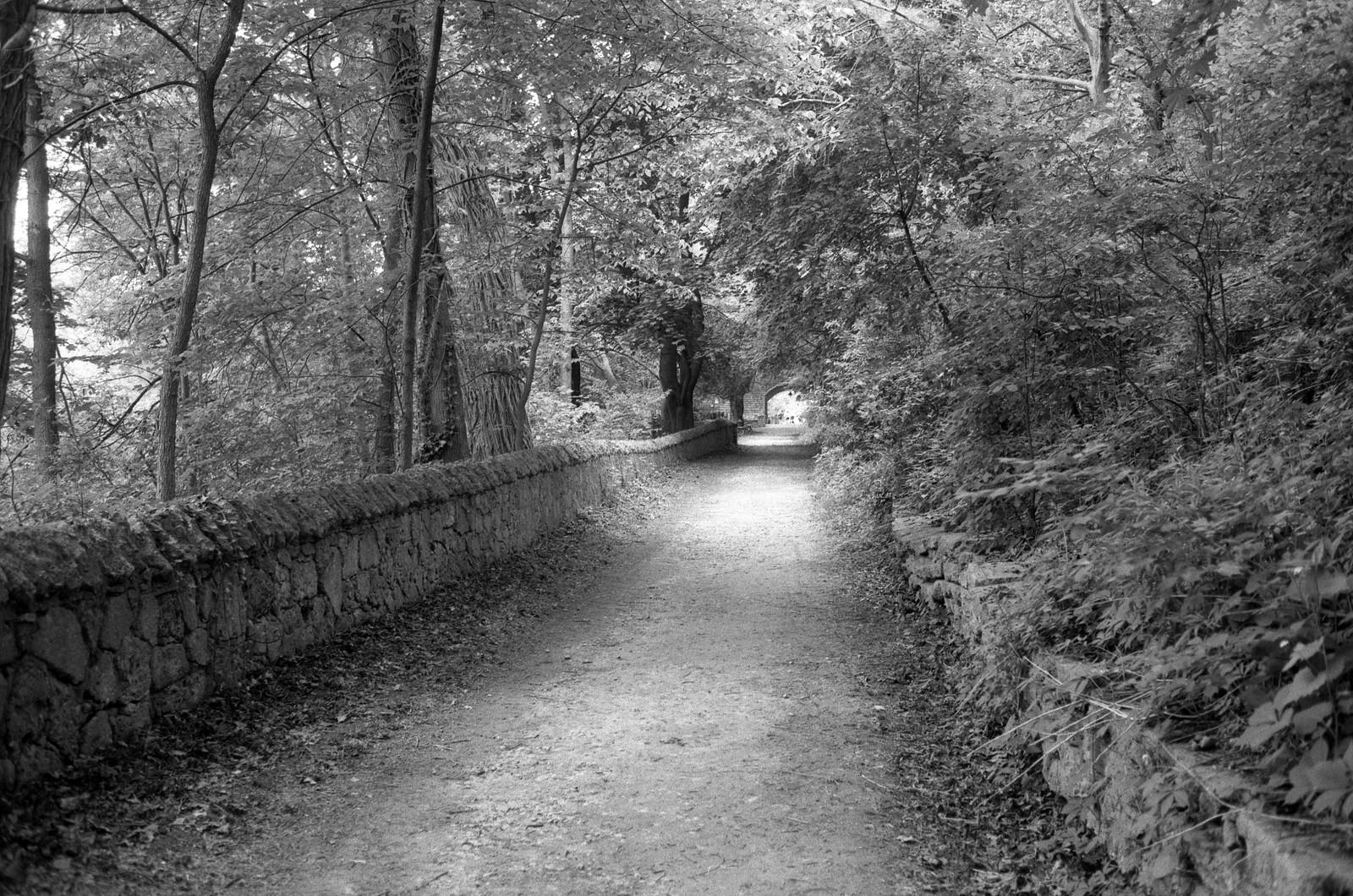 Long Dusty Trail