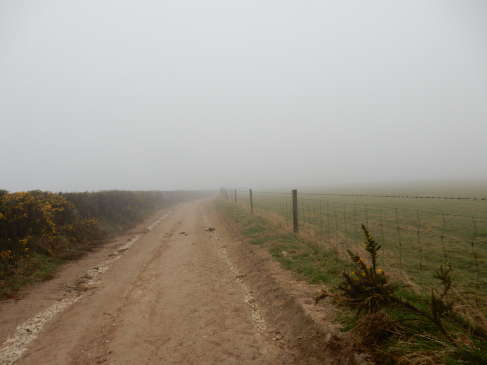 """""""View"""" along South downs way """"Why am I here"""" moment. Poor visibility and strong winds. Hassocks to Lewes"""