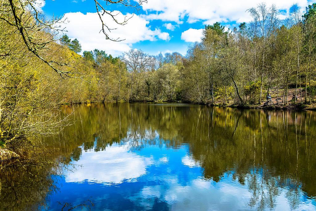 """Résultat de recherche d'images pour """"Broceliande et le lac miroire"""""""