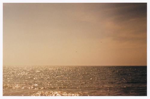 ocean pink light sea sky film analog 35mm xpro crossprocessed horizon grain slidefilm naples dreamy minimalism canona1 velvia100f magiclight bluemoonprints bluemoonprint