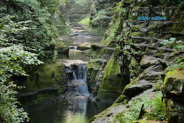 Small Falls Landscape sm