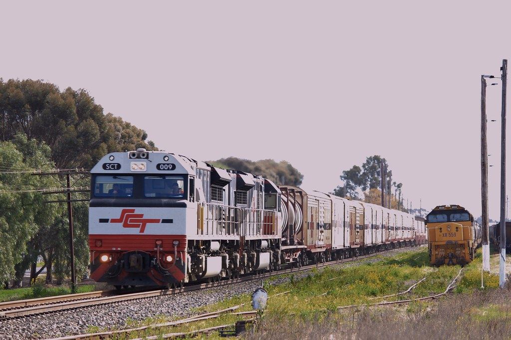 SCT009 and SCT005 power through Murtoa on a very late service while XR559 and 8171 watch on by bukk05