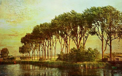 zuiderwoude waterland nederland noordholland holland kelskphotography netherlands zuiderzeepad zuiderzeepad8 law langeafstandwandeling longdistancetrail water bomenrijvanzuiderwoude treeline tree bomen textuur texture