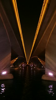 Impressed by the camera on the Sony Z3. This was taken whilst on a walk in Singapore   by Michael Frantzis