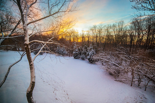 trees winter sunset sky snow color nature forest canon landscape photography maryland greenbelt canon6d