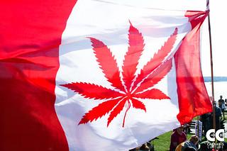 Vancouver Global Marijuana March 2015 - by Jeremiah Vandermeer   by Cannabis Culture