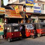 09 Viajefilos en Sri Lanka. Kandy 65