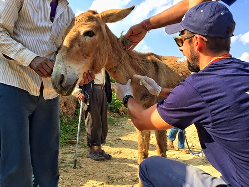 World Vets Disaster Response: Nepal | by WorldVets