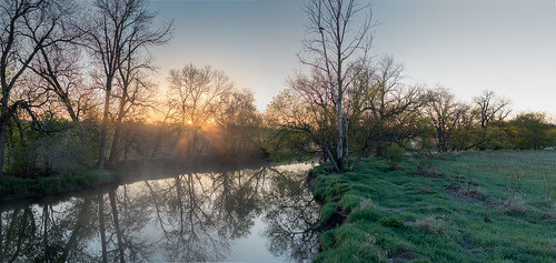 morning trees green water grass sunrise pano