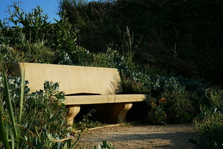 Bench | by Spark Photography