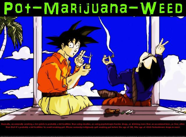 potmarijuanaweed(15)