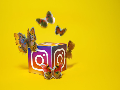 Social Media Butterfly - Instagram | by Visual Content