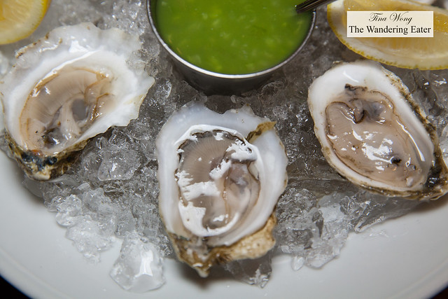 Wellfleet oysters with cucumber mint jalapeno mignonette sauce