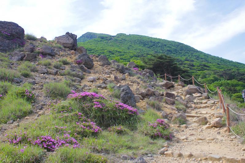 20140601-韓国岳-0061.jpg