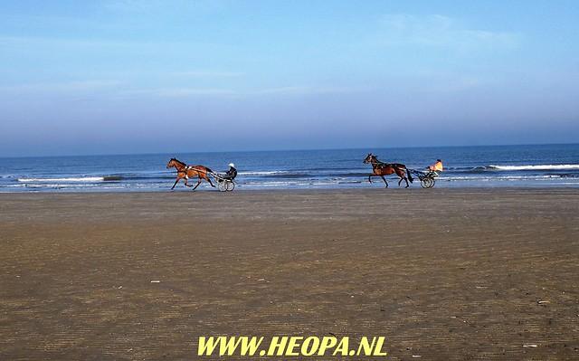 2018-03-31                Wijk aan Zee      42 km  (15)