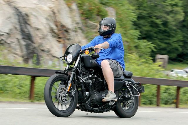 Harley-Davidson Sportster 1806204643w