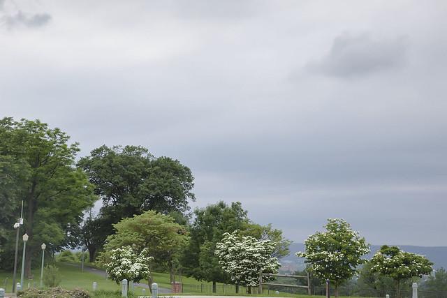 Park View, Civil War Museum