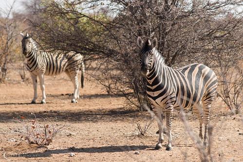 na namibia kunene