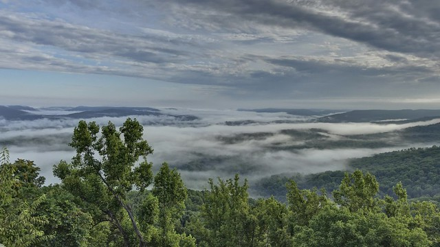 Fog at Rocking Rock, White County, Tennessee
