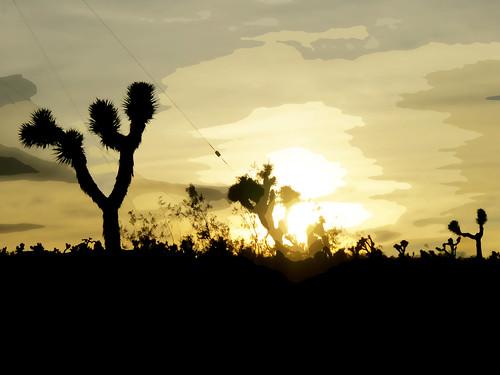 california sunset usa cutout joshuatree canonpowershots100