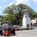 09 Viajefilos en Sri Lanka. Kandy 47