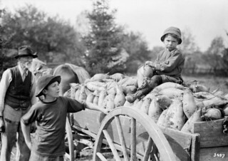 Children and old man with a cart filled with mangels from the John Davis Farm, 1913 / Des enfants et un vieil homme près d'un chariot rempli de betteraves à la ferme de John Davis, en 1913 | by BiblioArchives / LibraryArchives