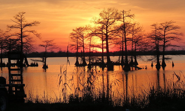 Venice, Louisiana. Bayou Sunset.
