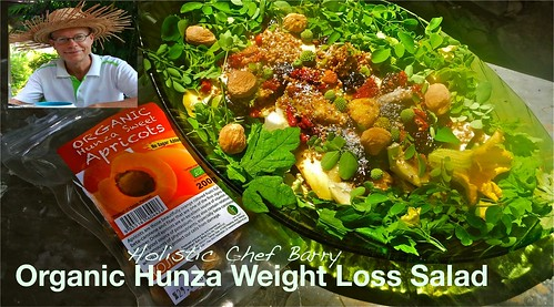 Organic-Hunza-Weight-Loss-Salad | by Barry Gourmet and Raw
