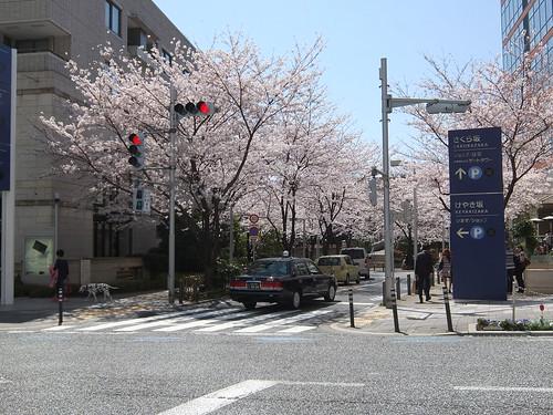 DSCF4641 | by Junichi Yamashita