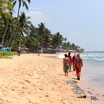 16 Viajefilos en Sri Lanka. Bentota 14