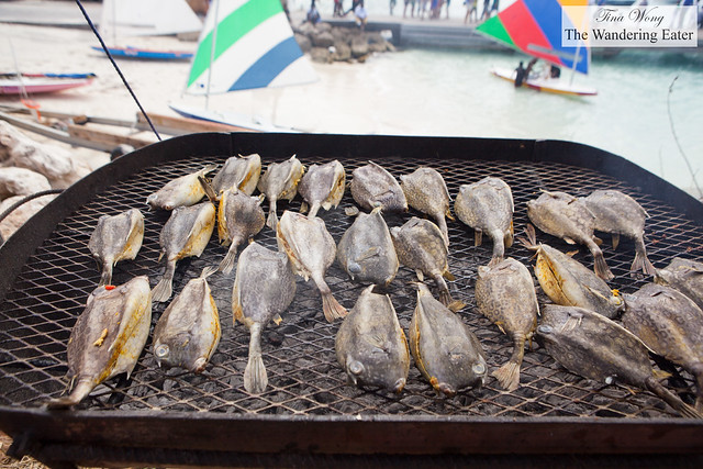 """Grilled """"shale fish"""" (puffer fish)"""