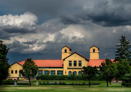 denver colorado unitedstates us trees plants lawn grass windows clouds cloudy public
