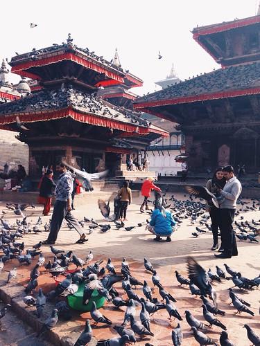 life street city nepal people landscape still ktm piegons durbarsquare kathamndu vsco