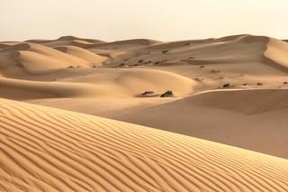 Sand waves | by Nicolas Rénac
