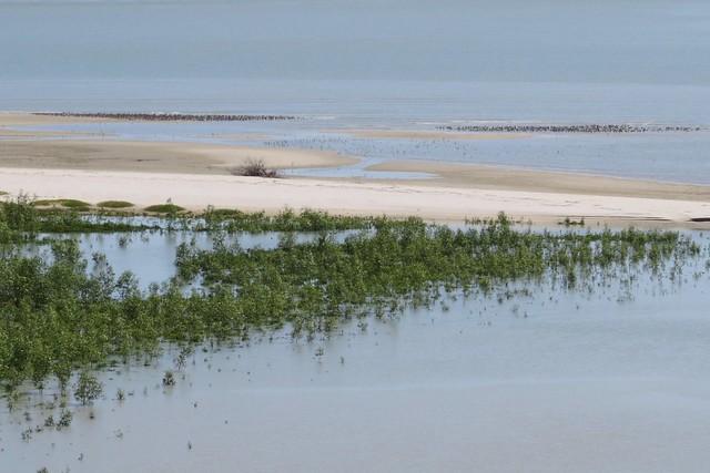EAAF120 South East Gulf of Carpentaria Karumba Smithburne (DeltaDowns)