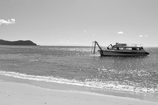 Awaroa Beach, Abel Tasman National Park | by ndimmock