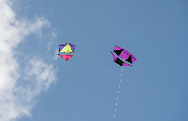 Kite lineage - Hackney Marshes