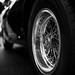 Ferrari 250 GT, rear wheel by David A. Barnes