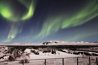 Northern Lights | by www.travelosio.com