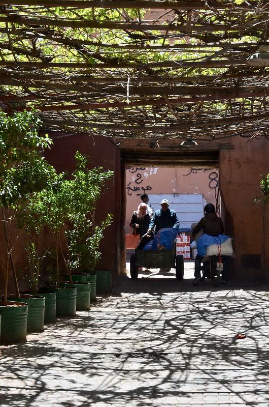 marrakech april 2018