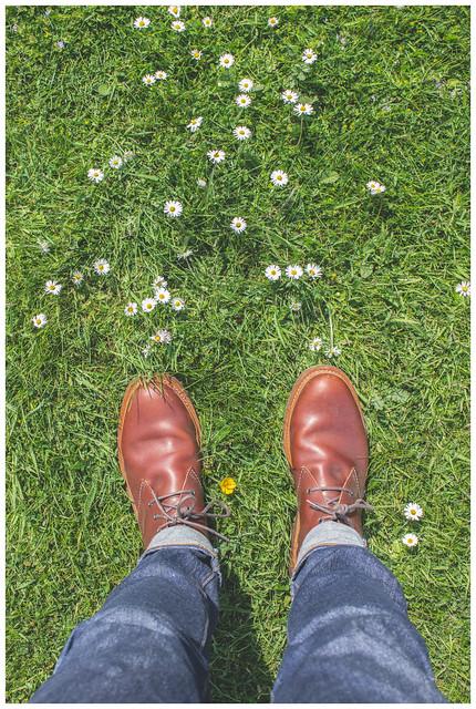 Feet & Daisies, Port Logan