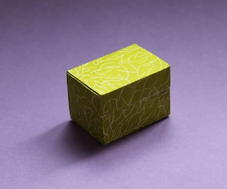 Anna Kastlunger - Simple Box with Lid | by origami_8