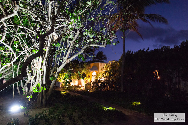 Path to Spice Lounge and Pimms in Cap Juluca Resort