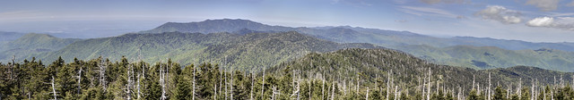 View north from Clingmans Dome, Great Smoky Mountains National Park, Sevier County, Tennssee