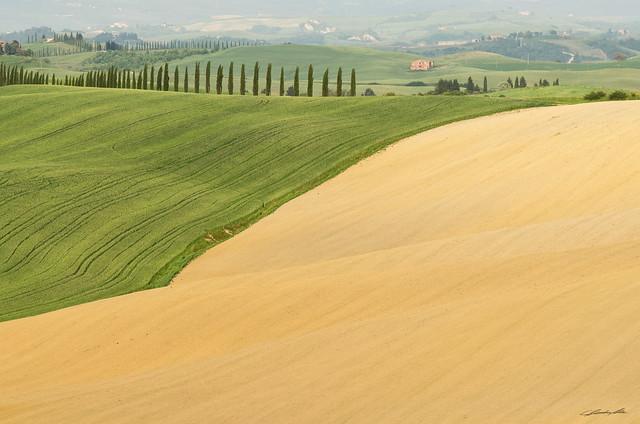 Paesaggio Toscanoso1