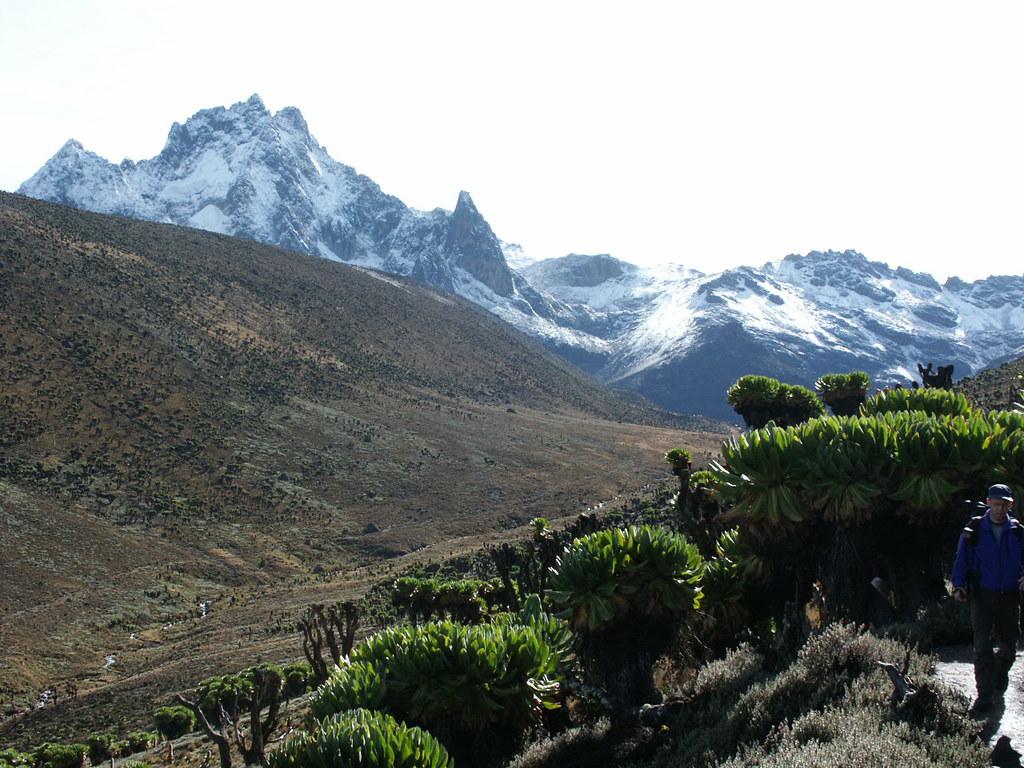 Mount Kenya seen from the Teleki Valley.